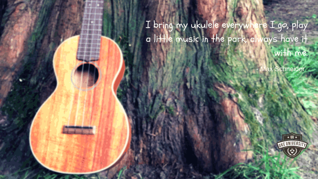 quote by max schnieder I bring my  ukulele everywhere I go